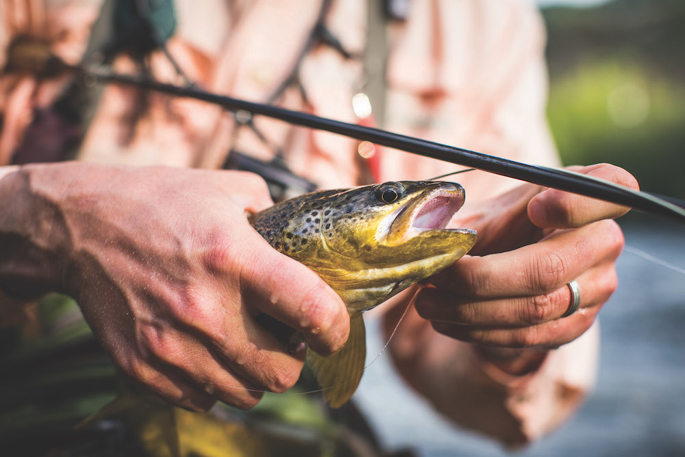 Fishing 5663 (1)