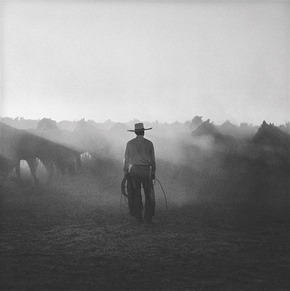 Sheridan Jaheil Cowboy