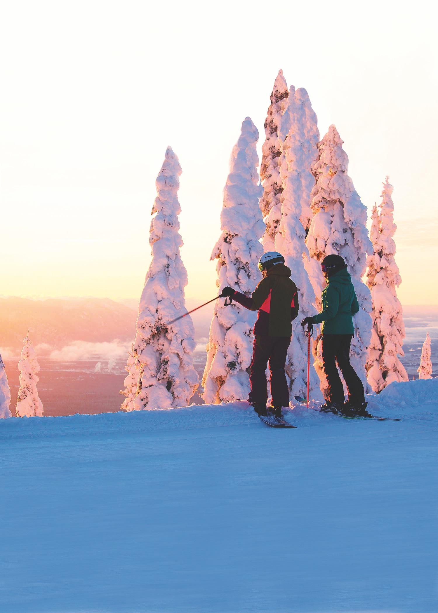 Destination Skier