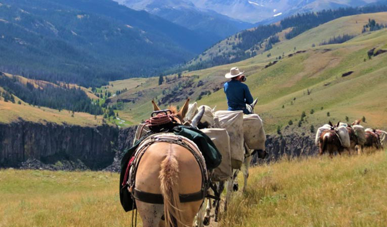 Bow Wyoming Outfitter And Guides Daily Trial Rides