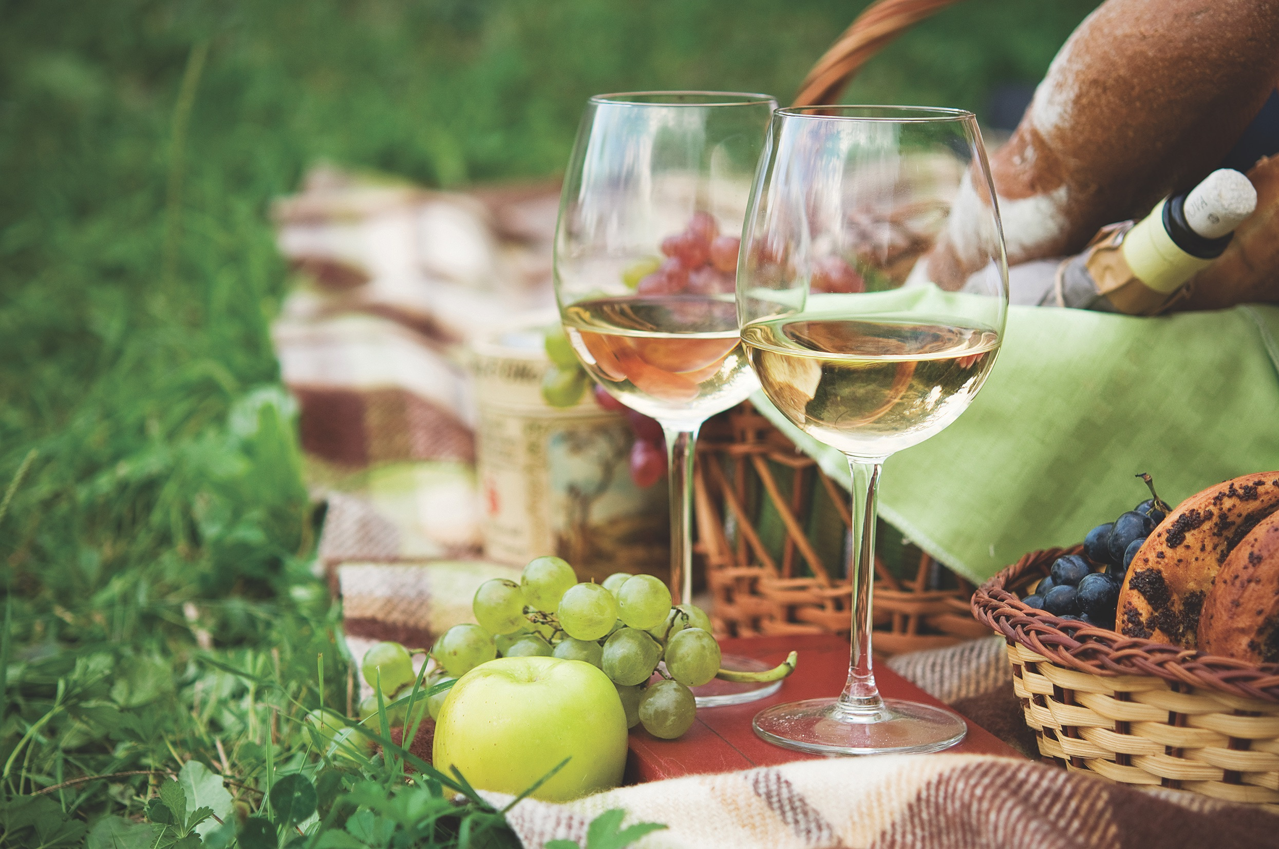 Two,glasses,of,the,white,wine,,picnic,theme