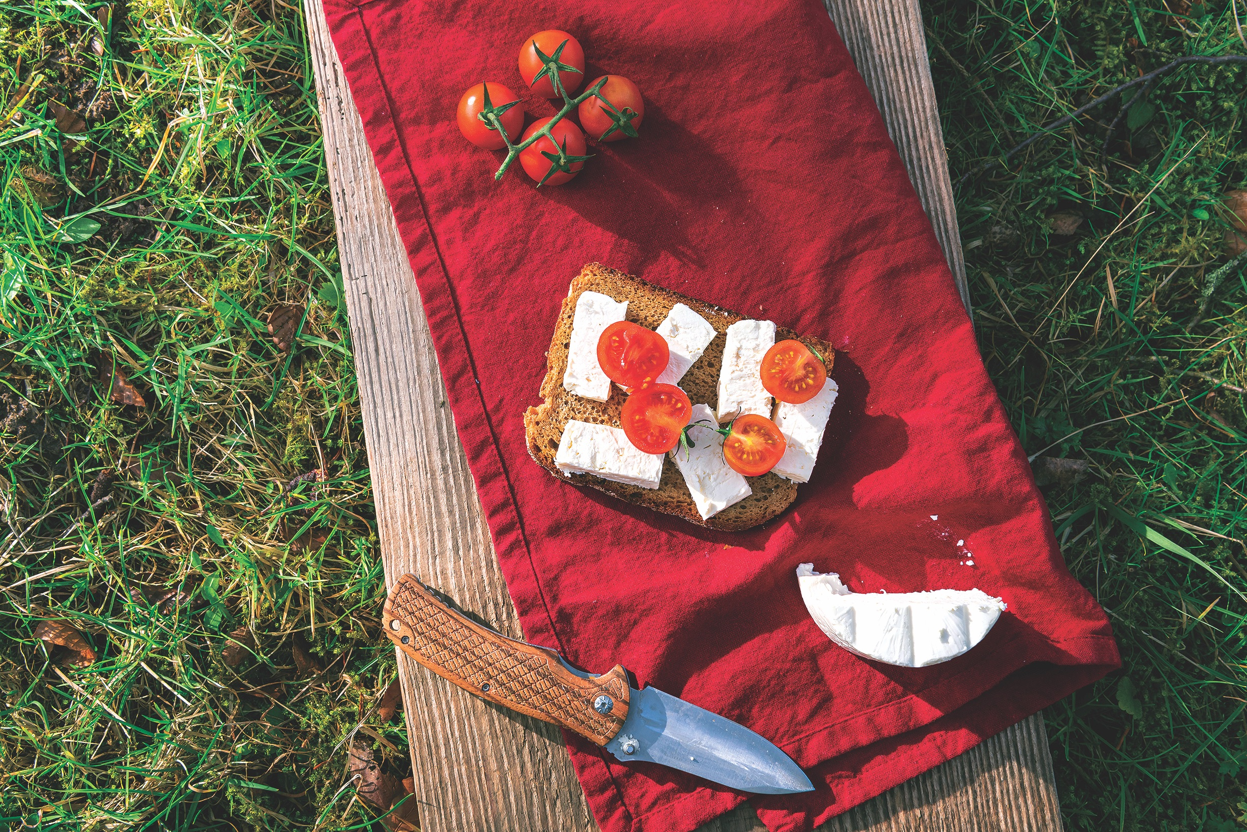 Tomatoes,and,cheese,sandwich,on,red,towel,,outdoor,,on,green
