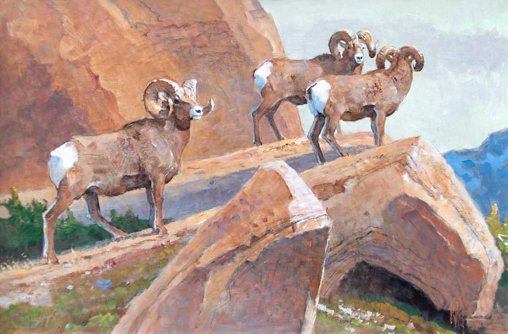 Kuhn Bob 1920 2007 Rams Along A Rocky Ridge Acrylic 12 X 18