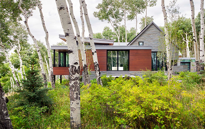 3 Gorgeous Trends In Green Home Design Mountain Living